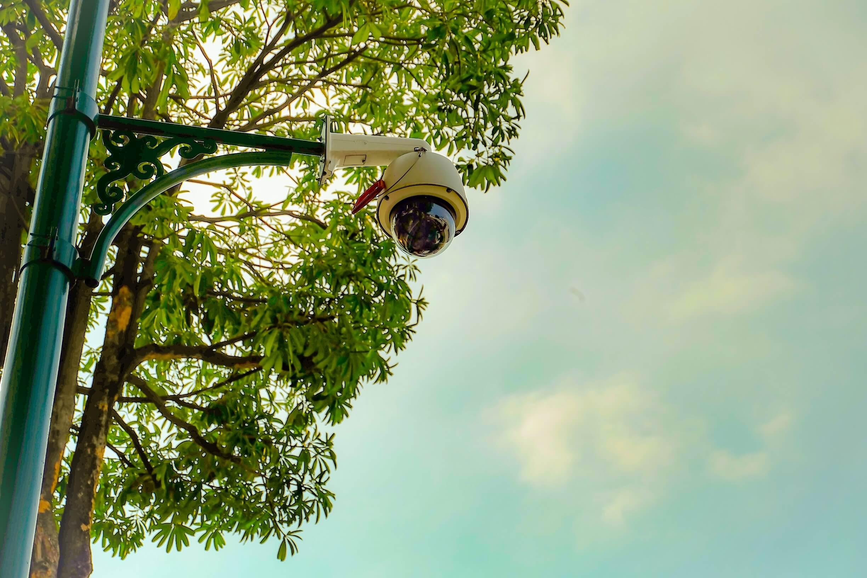public camera system